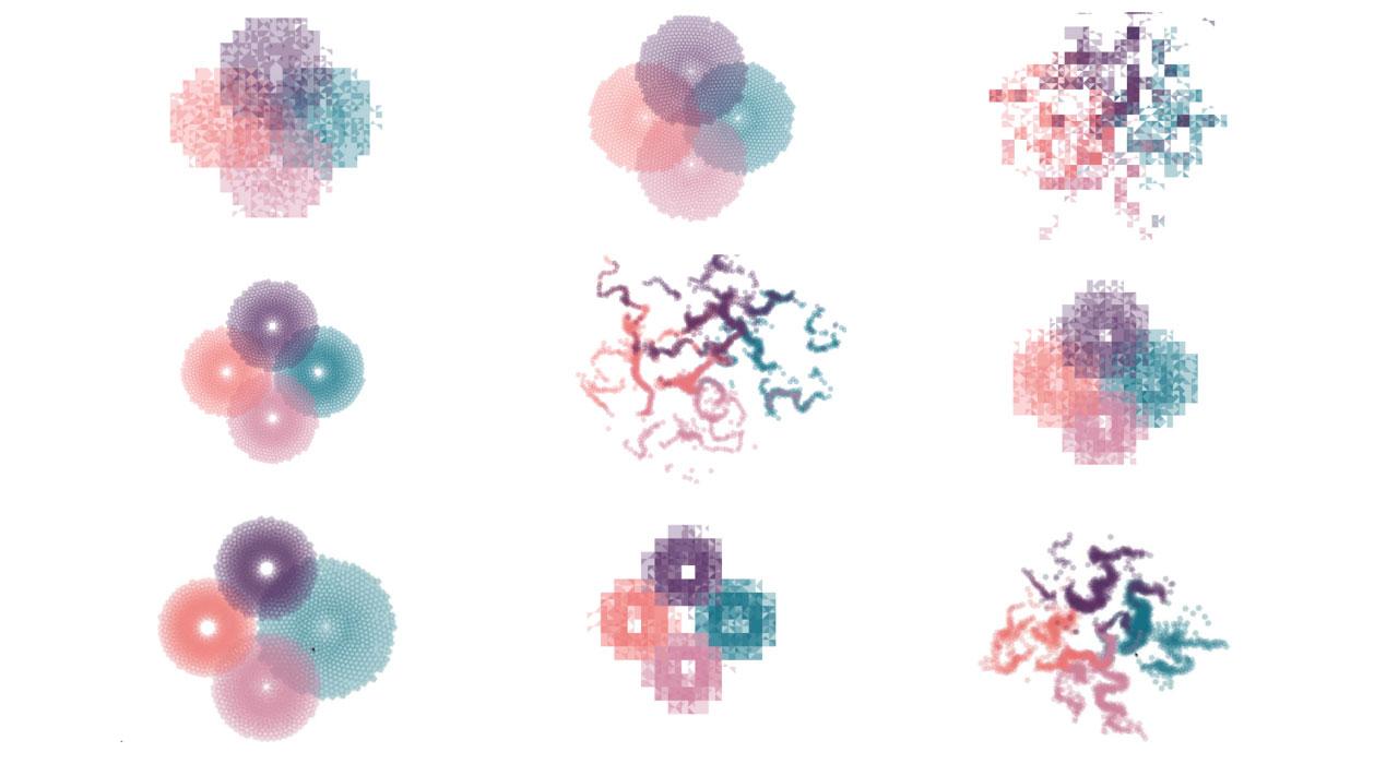 Algorithmic Animation